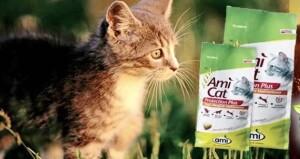 Оригинальный дизайн корма Ami Cat