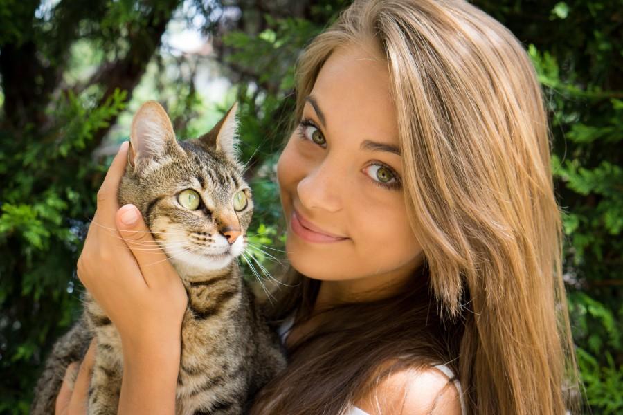 Корм для кошек Ami